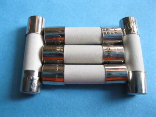 20 Pcs Slow Blow Ceramic Fuse 3.15A T3.15A 250V 5mm x 20mm 5x20mm New