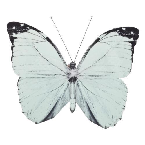 Schmetterlinge Clip Deko Klammer 20x15cm mint Dekoration