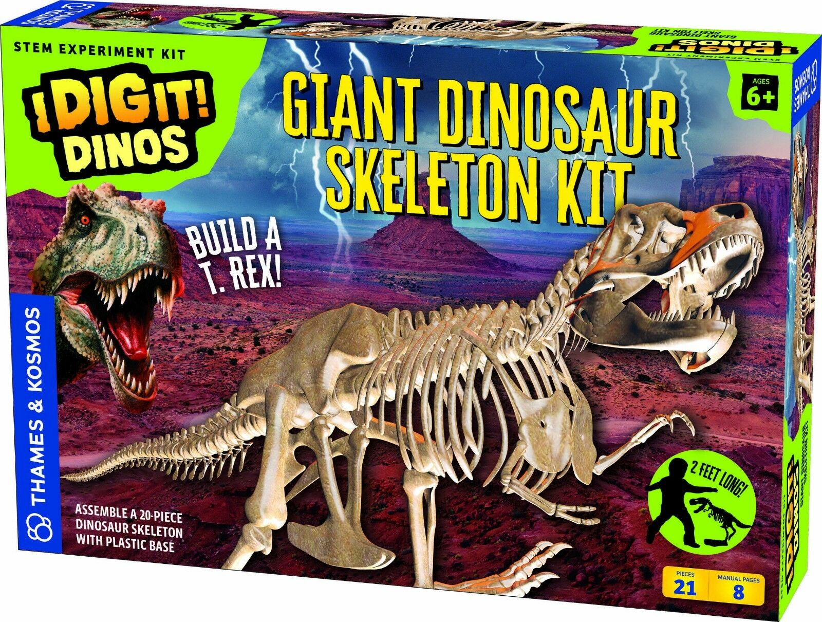 Thames and Kosmos I Dig It  Dinos Giant Dinosaur Skeleton Model Science Kit