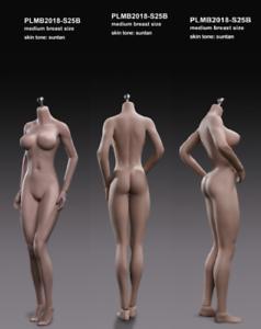 PLMB2017-S25B TBLeague 1 6 Flexible Seamless Stainless suntan Body Figure Teens