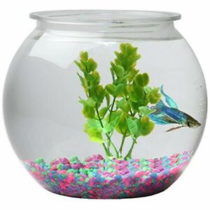 Koller-Products-1-Gallon-Globe-Fish-Bowl-1-Gallon