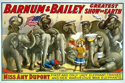 Vintage Circus Carnival Poster Lady Elephant Trainer Art Print Picture A4