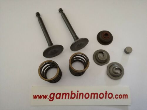 Kit Valves Assembled Engine Honda Gx240 Gx270