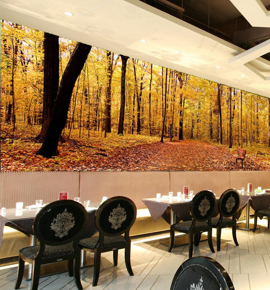 3D Herbstliche Landschaft 864 Tapete Wandgemälde Tapete Tapeten Bild Familie DE