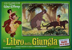 T61-Fotobusta-Die-Buch-Der-Dschungel-Walt-Disney-Animation-Zeichentrickfilm-1