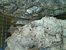 2 kg di sughero corteccia albero per presepe da san gregorio na
