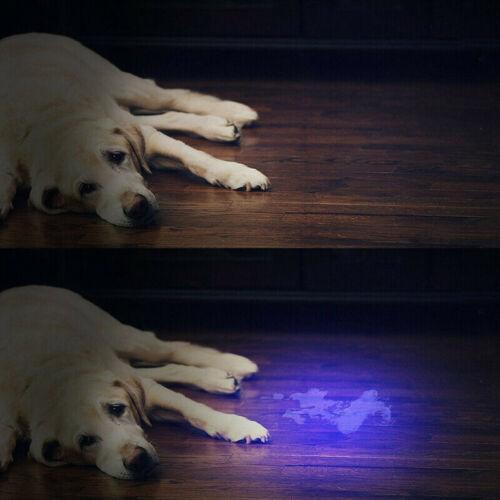 15W 10W Ultra Violet Flashlight UV wick LED 365nm Inspection Torch Urine Detect