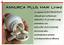 miniatura 5 - ANNURCA PLUS HAIR Line@ 60 cps INCREMENTA i CAPELLI +Zinco-Rame-Biotina-Selenio