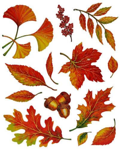Ventana Imagen otoño-hojas hongos castañas y frutos de otoño-sticker /_ Stati