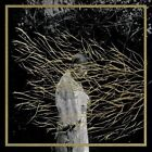 Engravings [Digipak] by Forest Swords (CD, 2013, Tri Angle)