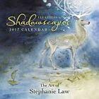 Llewellyn's 2017 Shadowscapes Calendar by Stephanie Pui-mun Law 9780738748214