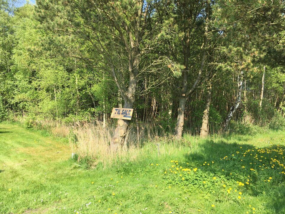 Fritidsgrund 250 m fra Limfjorden