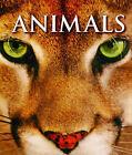 Animals by Bonnier Books Ltd (Paperback, 2010)