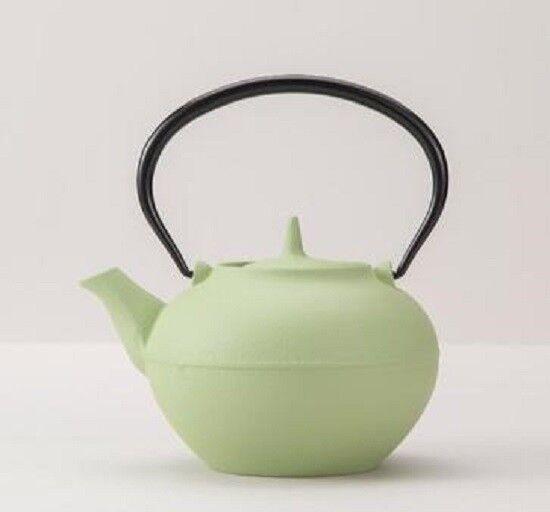 Iwachu Nanbu Tekki Ironworks Tea pot  (Wormwood color) from Japan