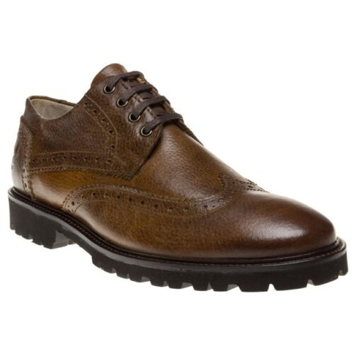 Lace da Up Lyle uomo Scott scarpe Brown Nuove Drolsay 8aq0wFZn5