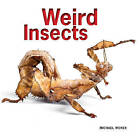 Weird Insects by Michael Worek (Paperback, 2013)