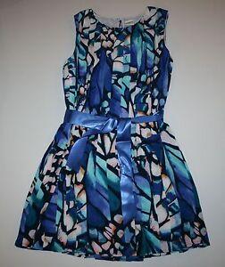 Butterfly Wing Dress