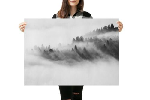 A1 Foggy Forest Poster Art Print Size 60 x 90cm Nature Wall Decor Gift #14165