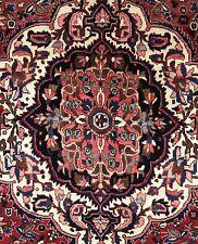 Beautiful Bakhtiari - 1930s Antique Persian Rug - Tribal Carpet - 7 x 10.5 ft.