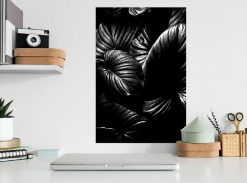 Details about  /3D Black Leaves 541RAIN Wall Stickers Wall Mural Decals Boris Draschoff Honey