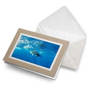 Greetings-Card-Biege-Marlin-Swordfish-Sea-Creature-21849