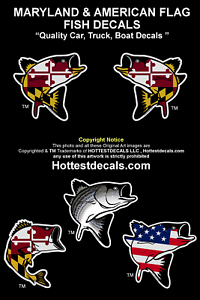 Large striped bass decal