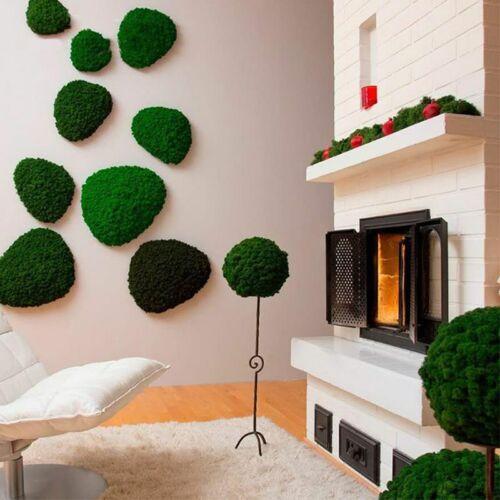 Artificial Plant Norwegian Reindeer Moss Natural Eternal Life Moss Home Decor