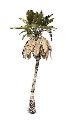 TPD-009 1//35 NEW DESERT PALM TREE MODEL.MODEL NO