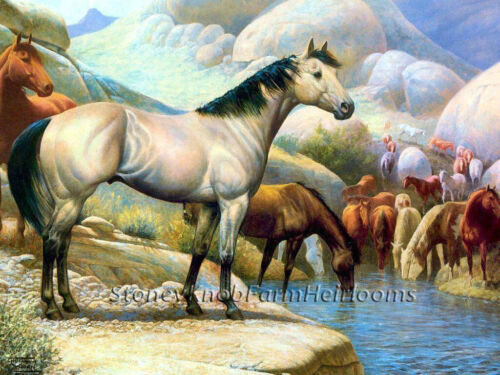 The Watering Hole ~ Horses ~ Counted Cross Stitch Pattern
