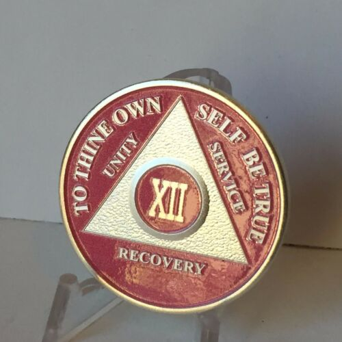 Pink /& Silver Plated 12 Year AA Chip Alcoholics Anonymous Medallion Coin