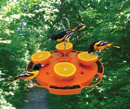 Songbird Essentials Ultimate Oriole Feeder SE905 Orange