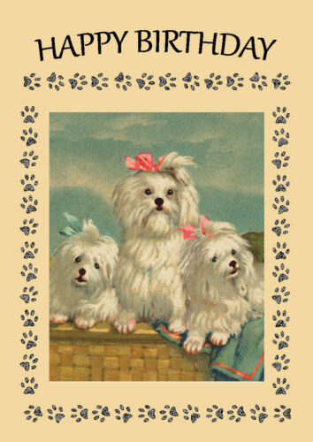 MALTESE MUM AND PUPS DOG BIRTHDAY GREETINGS NOTE CARD