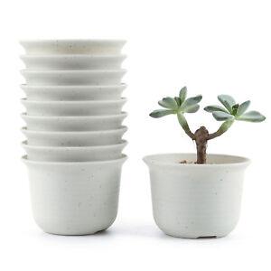 100% Vrai 10x 3.5 Inch Plastic Round Succulent Plant Pot/cactus Flower Planter T4u