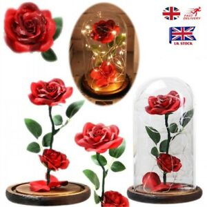 Uk Beauty And The Beast Enchanted Rose In Glass Dome Flower Light Up