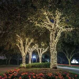 Amazing Image Is Loading ORA 100 LED Solar Powered Outdoor String Lights