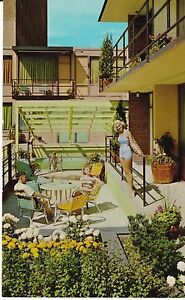 Minneapolis-MN-034-The-Curtis-Hotel-Motor-Lodge-034-Postcard-Minnesota-FREE-US-SHIP