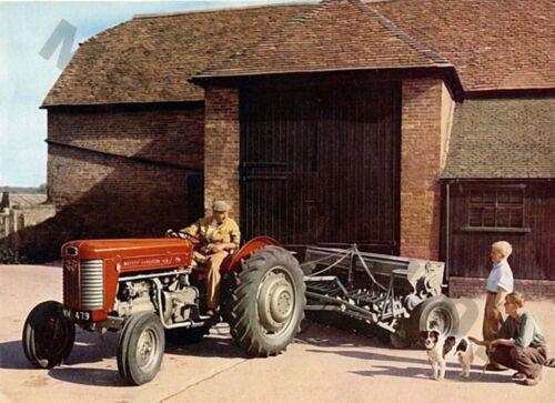 Massey Ferguson 65 Tractor (B) - Poster (A3) - (3 para 2 Oferta)