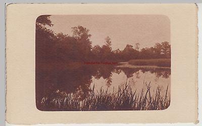 (f15320) Orig. Foto Landschaft, Bäume, Teich 1910er Durchblutung GläTten Und Schmerzen Stoppen
