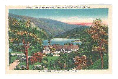 Skyline Parkway Motor Court Waynesboro Virginia Unused Vintage Postcard EB68
