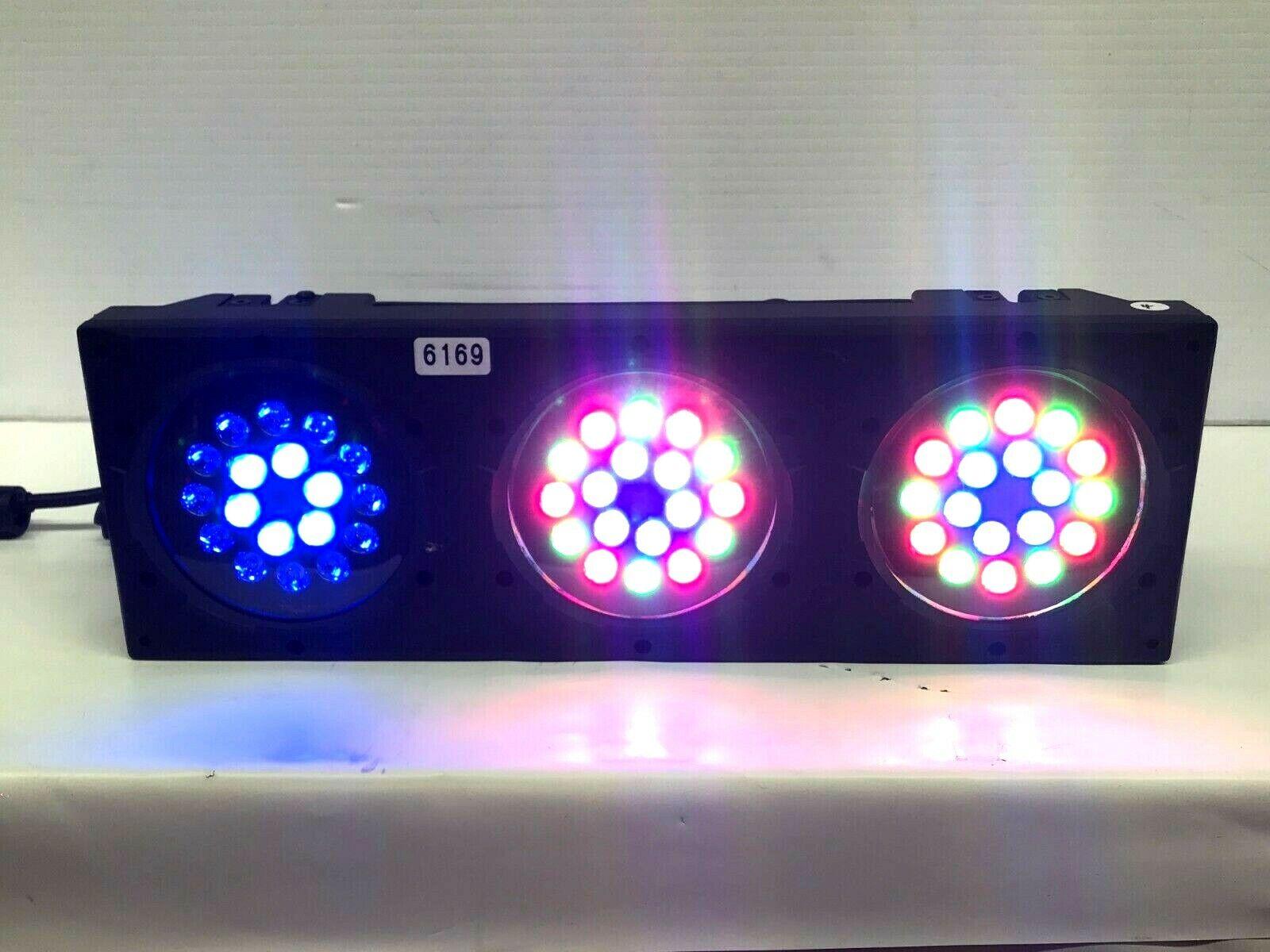 CHAUVET FarbeADO 3 LED LIGHT  6169 (ONE)