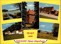 Gruss aus Seedorf Kreis Segeberg color Mehrbild-AK Postkarte gebraucht gelaufen