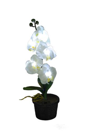 Polyester Solar Flower Light Orchid//Rose Garden Yard Landscape Decor LED Light