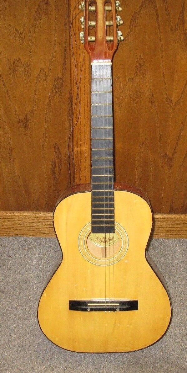 Vintage Hondo  H010-N Acoustic Guitar with  Case