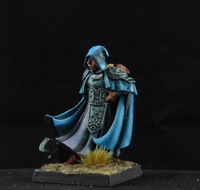 Pintado Sir Broderick de Reaper Miniatures D&D Macho justiCoche