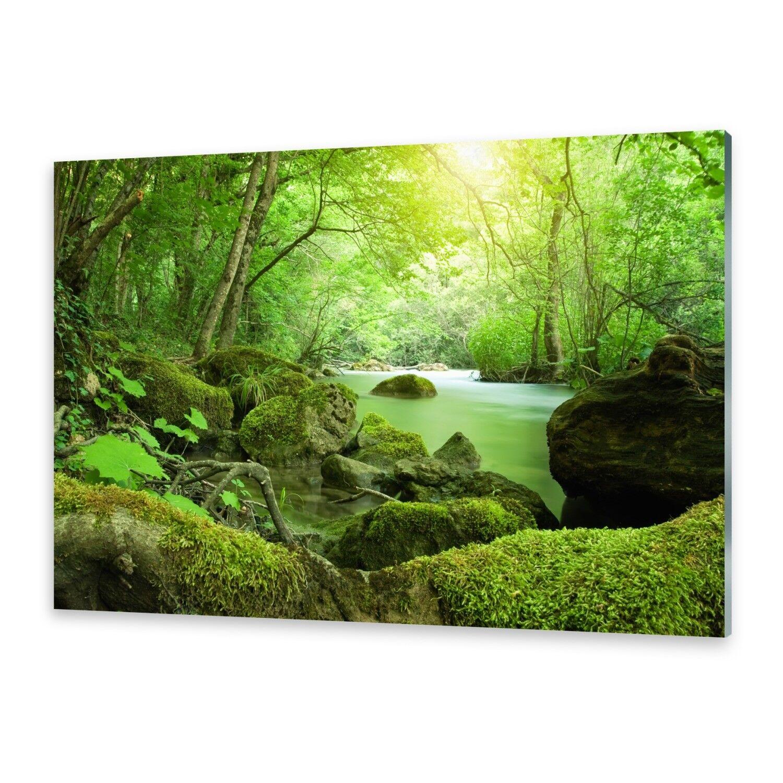 Acrylglasbilder Wandbild aus Plexiglas® Bild Fluss Wald