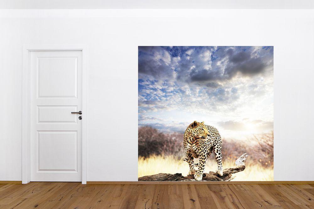 Fototapete Fototapete Fototapete - Leopard auf einem Ast 084ffc