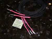 10 Ft. Audiophile Silver Plated Speaker Wires With Silver Plated Banana Plugs