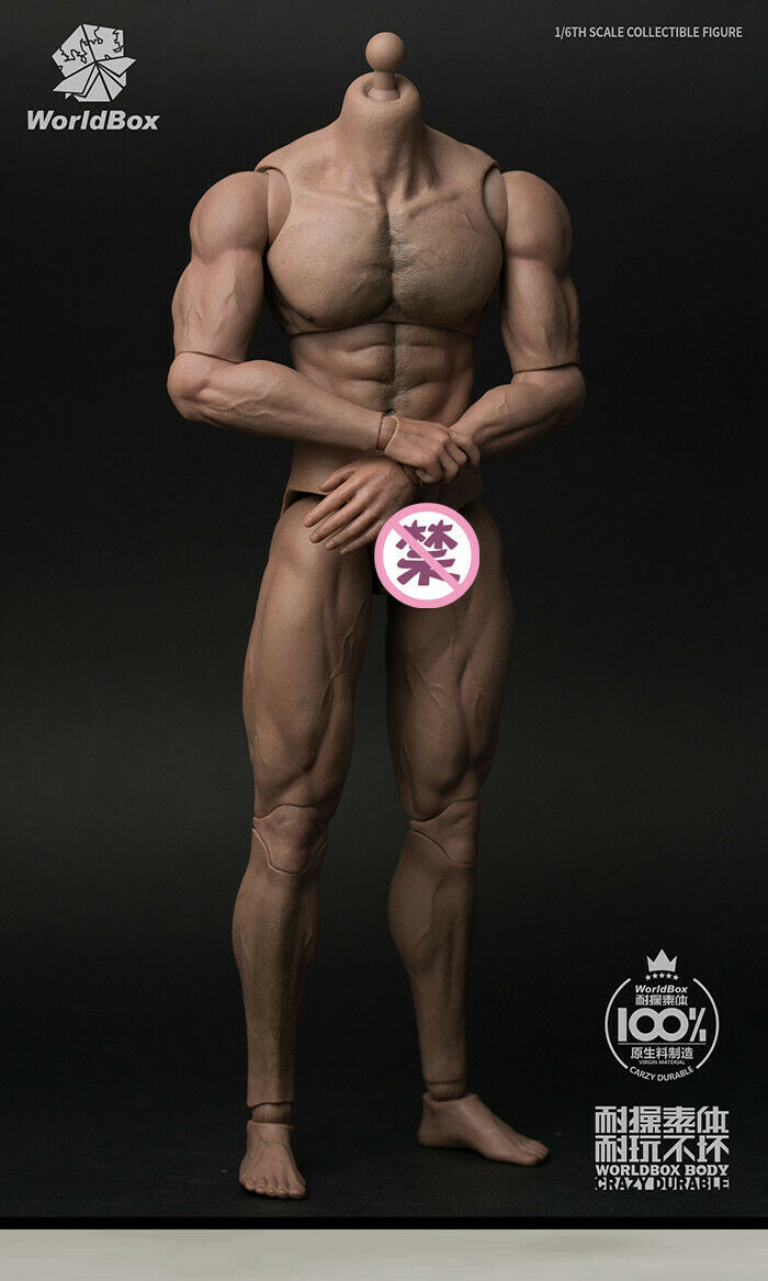 1 6 Figure Body Model Male Muscle Durable 12'' Strong Figure Model Toy
