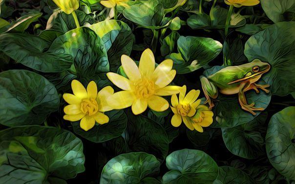3D Gelb Flower Frog Floor WallPaper Murals Wall Print Decal 5D AJ WALLPAPER