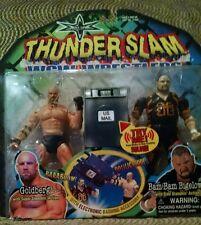 2000 Bill Goldberg GOLD Autographed WCW WWE WWF Thunderslam Action Figure